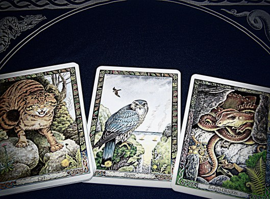 Druid Animal Oracle by Philip & Stephanie Carr-Gomm